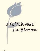 stevenage in bloom